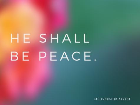 he shall be peace.